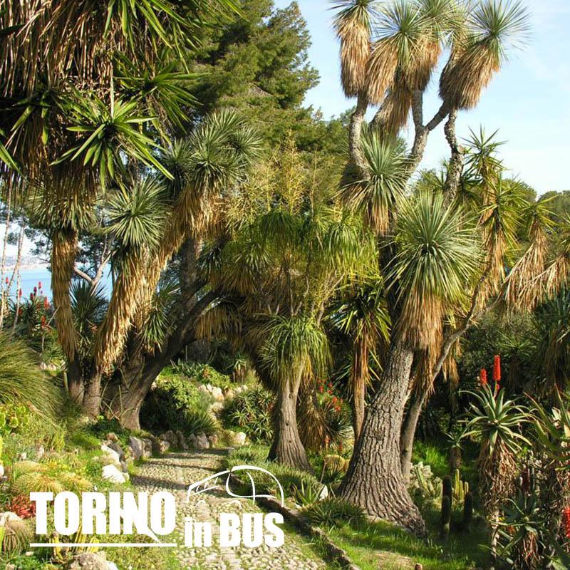 Giardini Hanbury e Finalborgo - Torino in Bus
